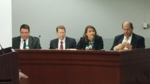 georgia power irp panel